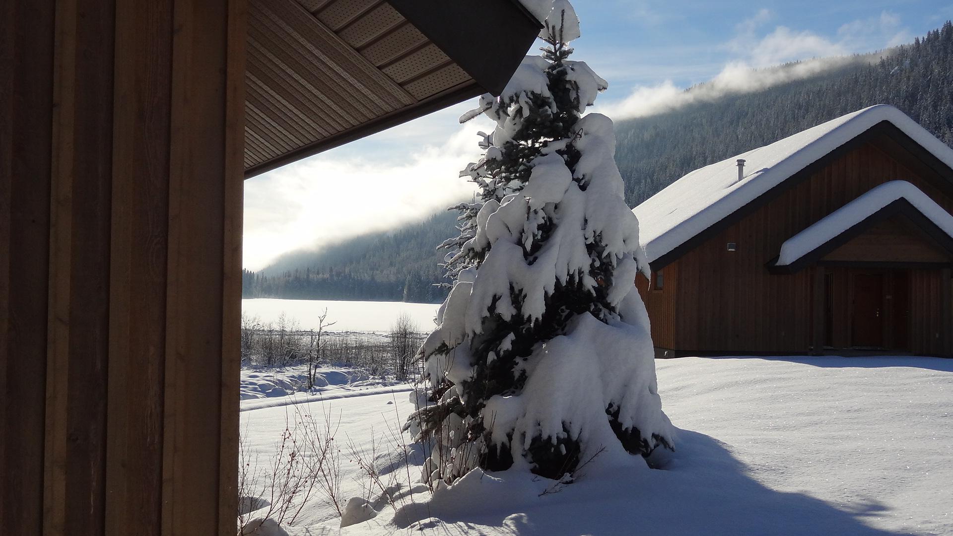 alpine meadows resort in snow