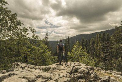 Hiker looks over Wells Gray Park