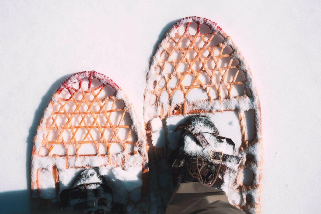 Snow Shoe Trails in Wells Gray